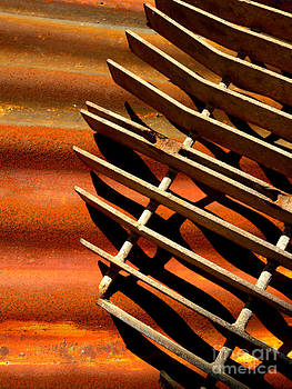Grate Shadows by Robert Riordan