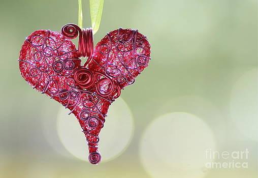 Grateful Heart by Brenda Schwartz