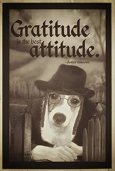 Gratitude is the best Attitude -5 by Kathy Tarochione