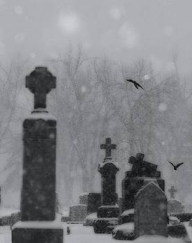 Gothicolors Donna Snyder - Graveyard Snow