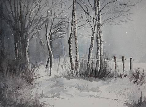 Gray Forest by Rachel Hames