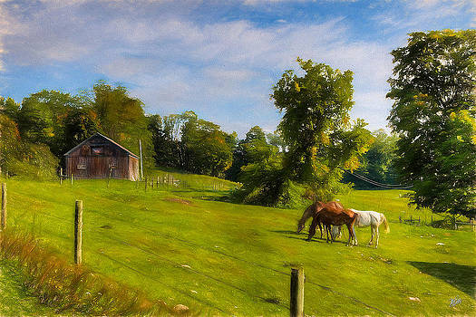 Grazin' In The Grass by Michael Petrizzo