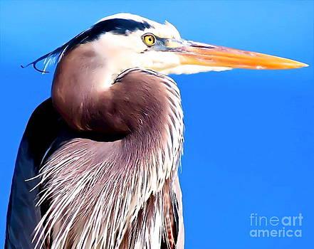 Great Blue Heron by E Luiza Picciano