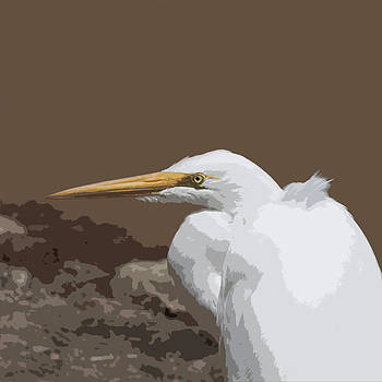Great Egret in Rocks by Bob and Jan Shriner