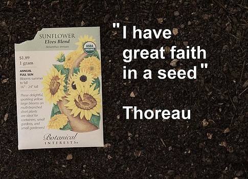 Great Faith in a Seed by Jon Simmons