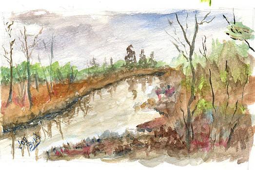Great Marsh Swamp by Joe Byrd