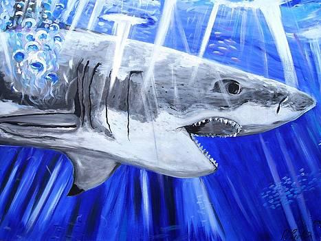 Great White Shark by Pawel Przemyslaw Pyrka