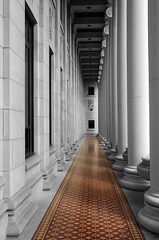 Architecture-Greek Columns by Matthew Miller