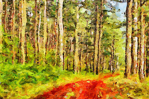 Greek forest by George Rossidis