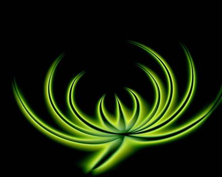Green distortion by Iliyan Stoychev