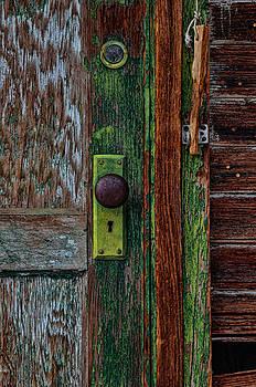 Green Door by Arnold Despi