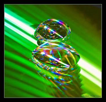 Green Drops by Michaela Preston