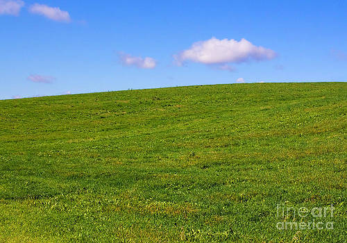 Barbara McMahon - Green Hill with Blue Sky