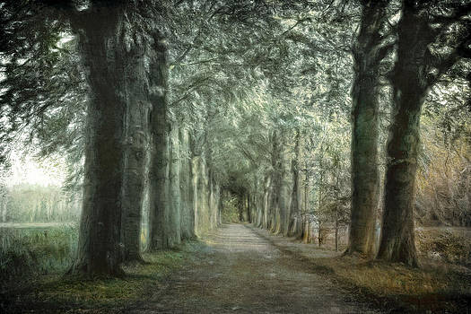 Green Magic by Annie Snel