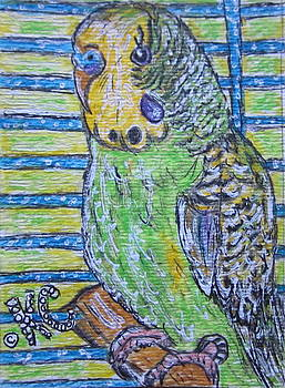 Green Parakeet by Kathy Marrs Chandler