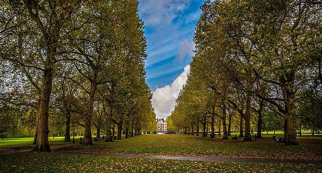 Green Park by Dobromir Dobrinov