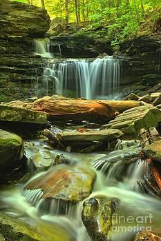 Adam Jewell - Green Spring Cascades