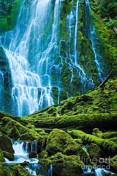 Inge Johnsson - Green Waterfall