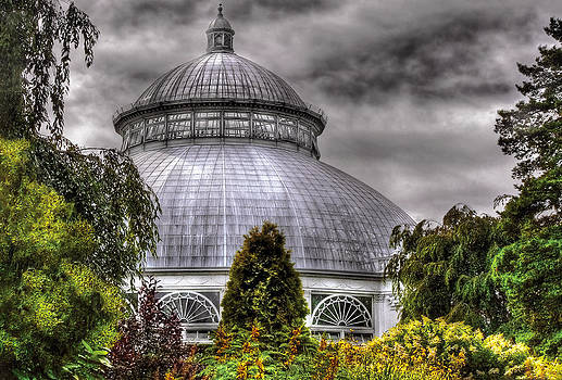 Mike Savad - Greenhouse - The Observatory