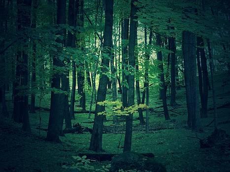 Greenry by Jon Glynn