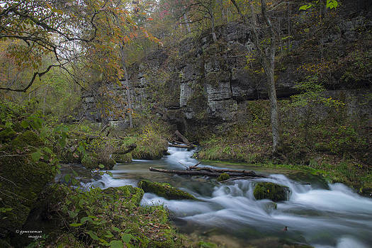 Greer Spring Canyon by Greg Weseman