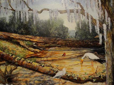Greg's Creek by Gudrun Hirsche