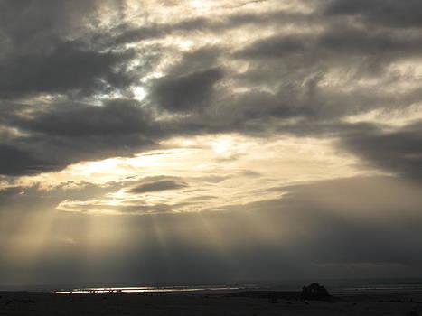 Grey Sunset by Debra Madonna