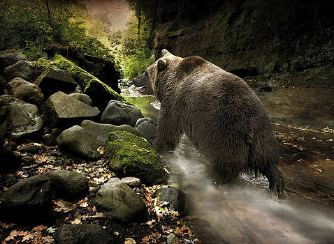 Grizzly Creek by Roy  McPeak