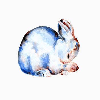 Grooming Bunny by Marla Saville