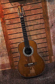 Guitar Solo by Terri Harper