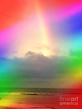 Gulf Rainbow by Michelle Stradford