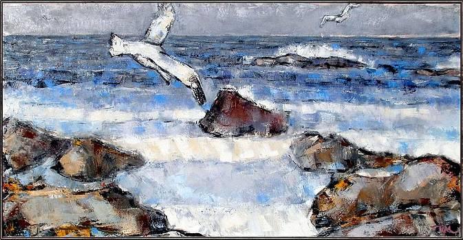 Gulls  by Pemaro