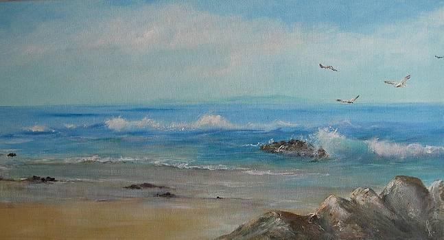 Gulls by Rita Palm