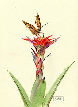 A Bromeliad Entertains a Visitor by Penrith Goff