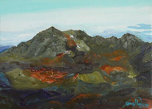 Haleakala  by Joseph Demaree