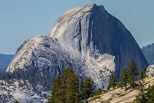 Half Dome Climbers by Brian Williamson