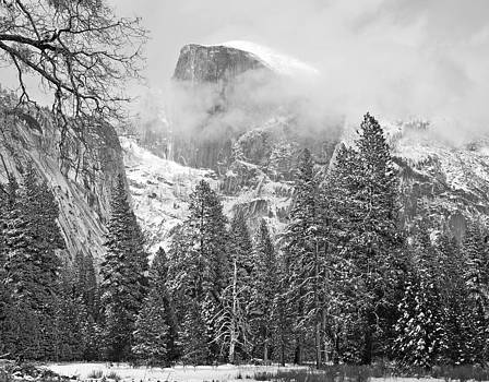 Half Dome Under Cover by Kay Price