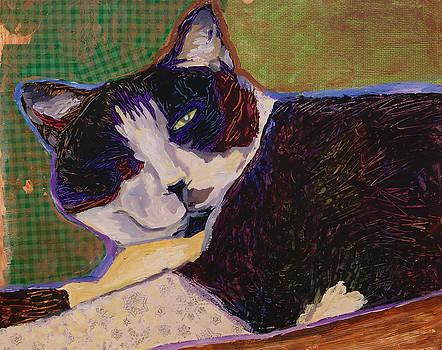 Half n Half Cat by Yvonne Gaudet