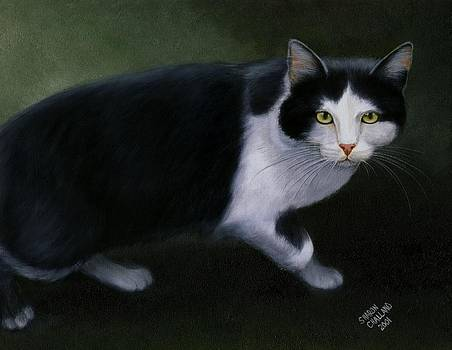 Half Wild Tom Cat  by Sharon Challand