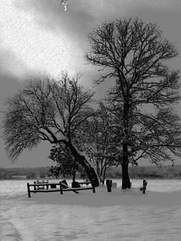 Halifax Corn Field by James Reynolds