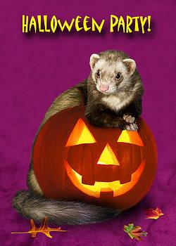 Jeanette K - Halloween Ferret
