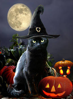 Witchy black Halloween Cat by Gina Femrite