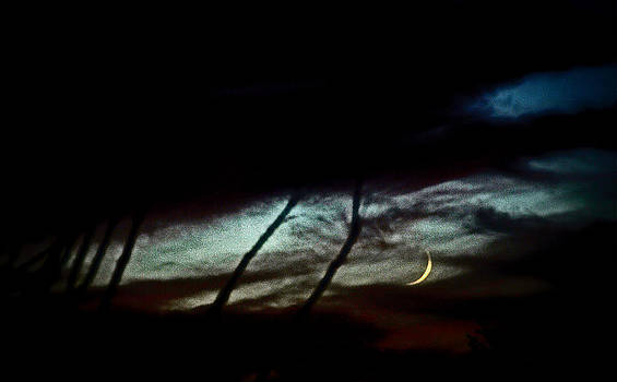 Halloween Moon Over Tucson Desert by Jon Van Gilder