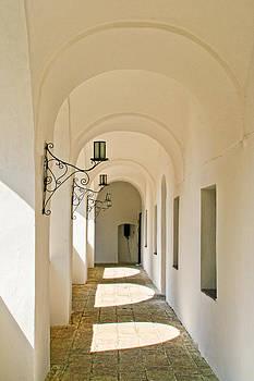 Matt Create - Hallway Palanok Castle