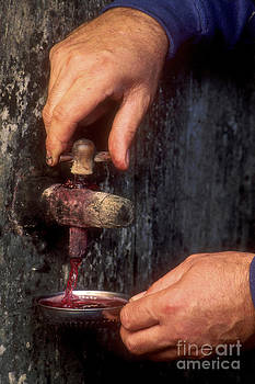 BERNARD JAUBERT - Hands pulling red wine barrel
