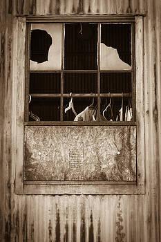Hangers in the Window by Randy Bayne