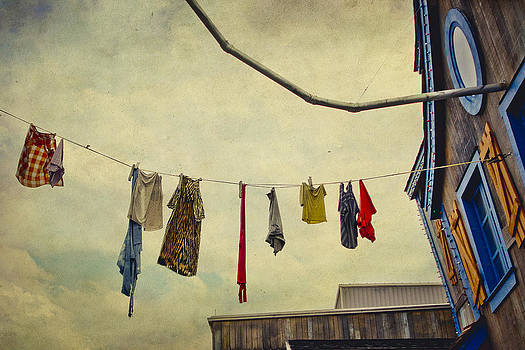 Hangin out to Dry by Elizabeth Wilson