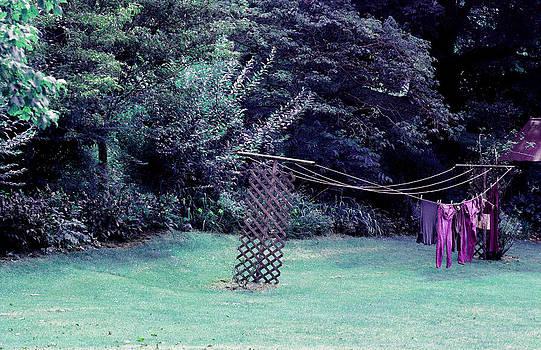 Hanging in Time by Paulette Maffucci