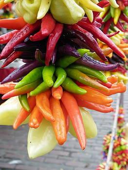 Hanging Peppers by Sarah Egan