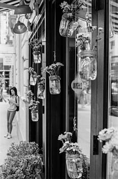 Hanging Plants by Andrew Kazmierski